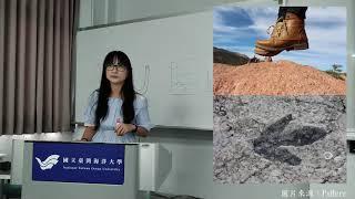 生痕化石-地球科學研究所 張英如