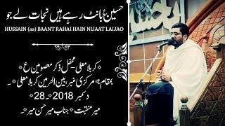 Zainab Gale Ko Choom Le Bhaiya Tu Jaiye|| Mir Hasan Mir Live