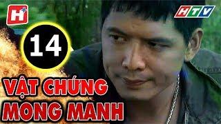 Vật Chứng Mong Manh – Tập 14 | Phim Hình Sự Việt Nam Hay Nhất 2017