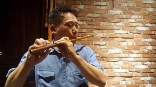LÝ HOÀI NAM (Đoạn 1) - Sáo trúc NSUT Đinh Linh