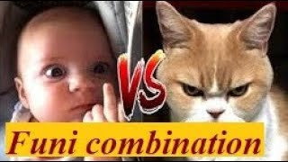 3M Fun and Fails- Funny animals troliing baby