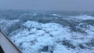 Imogen storm on bord Epsilon Irish Ferry