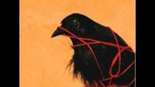 5/11 The Sound of Settling-Death Cab w/