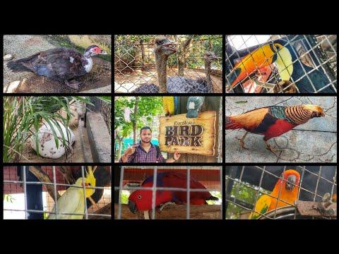 ESSEL WORLD BIRD PARK | MUMBAI'S FIRST INTERACTIVE BIRD PARK | English vlogs | ENTIRE INFORMATION