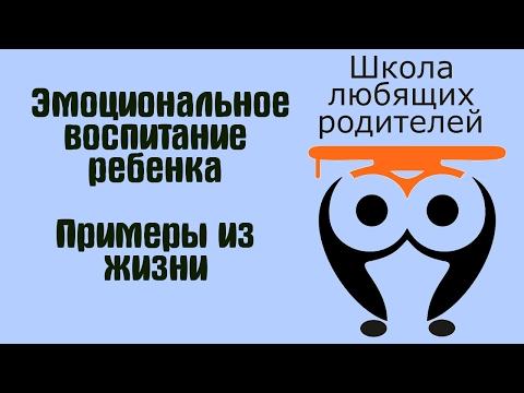 Как записать видео с экрана: программы и онлайн-сервисы