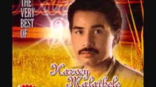 Harvey Malaiholo - Terpana