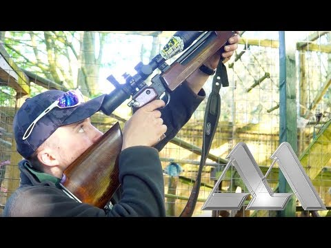 Airgun Hunting: Pest Control Shooting with the Air Arms S200