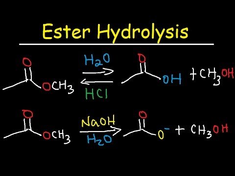 Ester Hydrolysis Reaction Mechanism - Acid Catalyzed & Base Promoted   Organic Chemistry