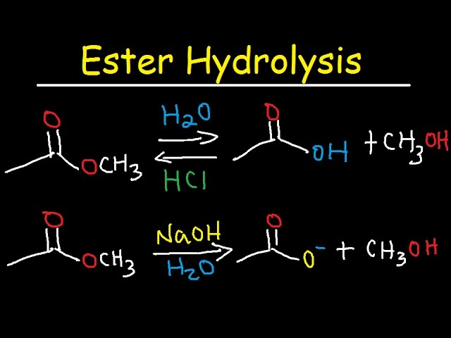 alkaline hydrolysis of ester lab report Chemistry organic chemistry laboratory experiments  in this experiment, you will be performing a kinetic analysis of the alkaline hydrolysis of an ester you.
