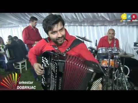 Prva harmonika sveta Srdjan DOBRNJAC -Svetski █▬█ █ ▀█▀ (Barajevo 2016)