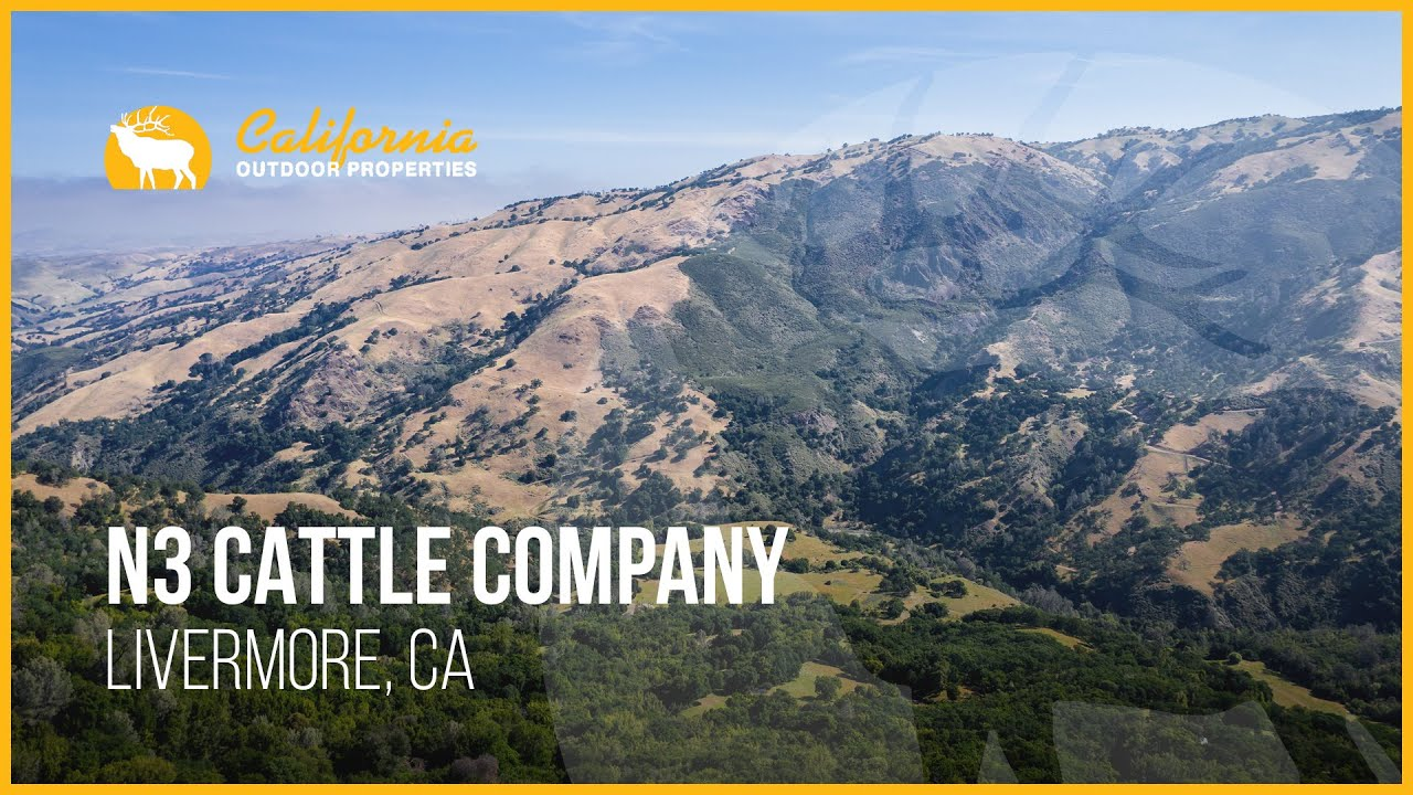 Download N3 Cattle Company | Livermore, CA