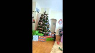 Happy Holidays Vincent Buckley Christmas 2013