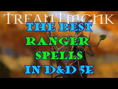 Best option for ranger 5e