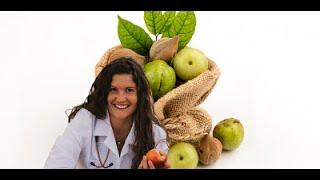 The Trifecta of Triphala GI Weight & Immune Health