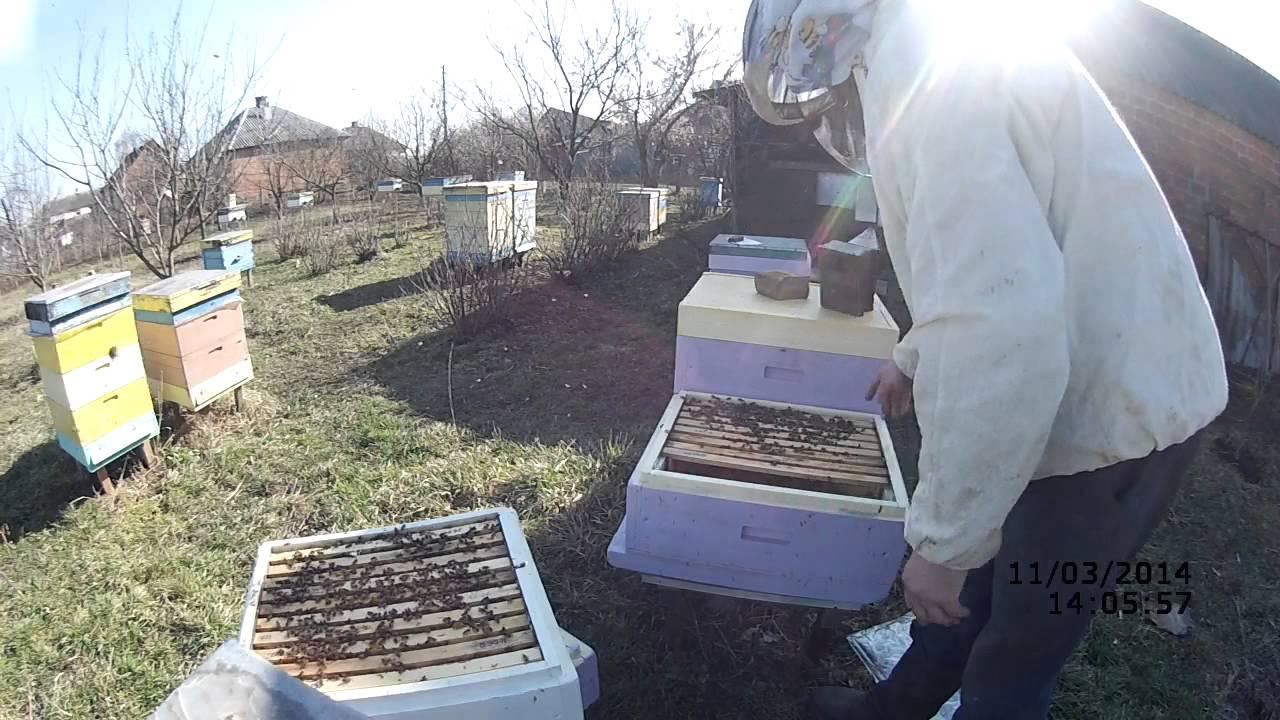 Есть и б/у дешевле рамки прицеп для ульев на 40 ульев. Центральный район. Продаются ульи для пчел 6 шт. Цена договорная. Город белореченск.