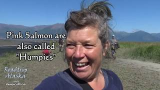 alaska-a-little-hope-culture-the-salmon-are-running