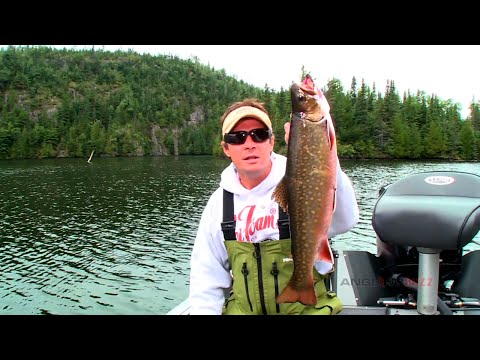 Brook Trout Lures And Tactics