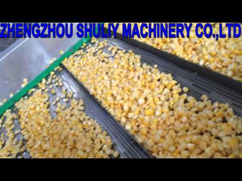 video of sweet corn product line  from Mina 2
