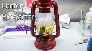 Building a Kerosene Lantern Bioreactor