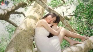 [♪] Ánh Dương Ngày Mai - Vi Oanh [Video Lyric] [♫]
