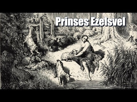 Prinses Ezelsvel - Luistersprookjes en Vertellingen