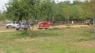 Barbaiana - Festa fattoria Agricola 2013_2