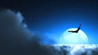 Instrumental fusion of Aaja re ab mera dil pukara ro ro ke ghum