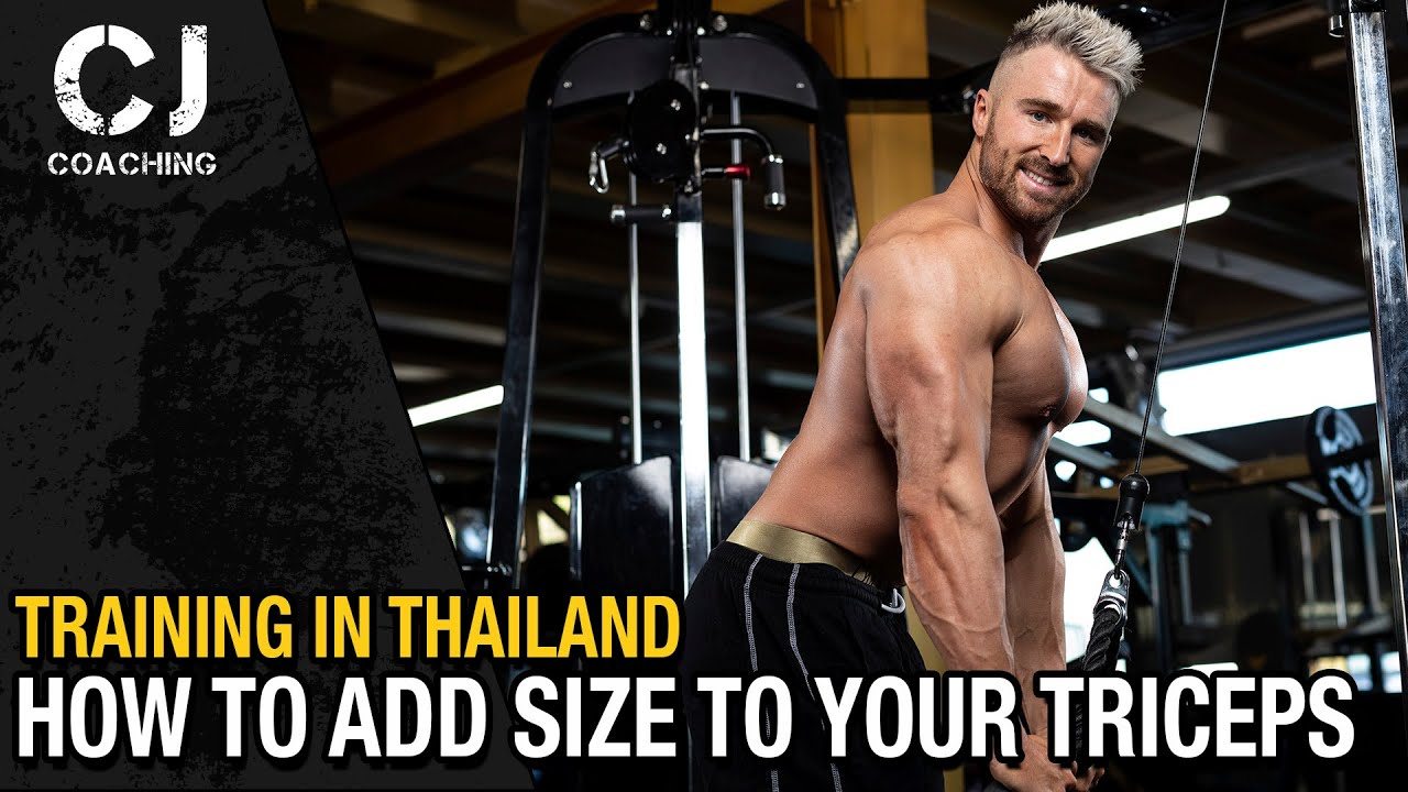 HOW TO Add SIZE to Your TRICEPS
