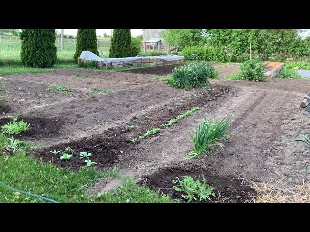 Start of gardening season