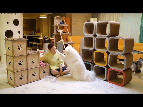 강아지와 고양이를 키우려면