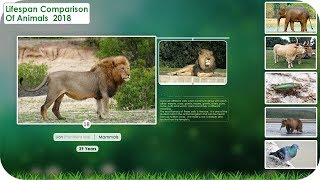 Lifespan Comparison of Animals 2018
