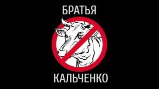 Быдло с юга. Братья Кальченко