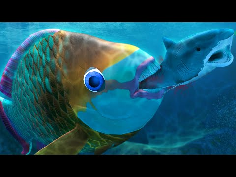 NEW PARROTFISH! NEW UPDATE! - Feed And Grow Fish - Part 146   Pungence
