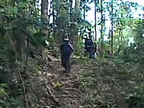 Efakuasi Di Sorik Mas Sumatra Utara