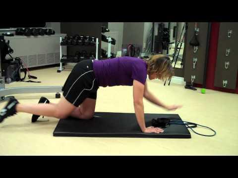 Ottawa Personal Trainer: Bird Dog Progression