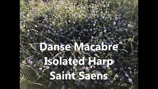 Saint Saens - Danse Macabre Isolated Harp
