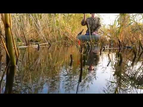 онлайн рыбалка в