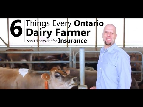 Ontario Dairy Farm Insurance - 6 Things You Should Consider