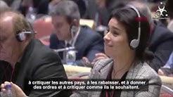 Humiliation d un depute français par MAE Turc Cavusoglu