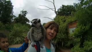 Visitamos el Zoo de La Fleche (Francia)