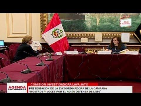Anel Townsend se presentó en la comisión Lava Jato como excoordinadora de la campaña por el No