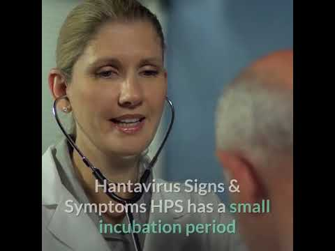 HantaVirus: Symptoms Diagnosis And Prevention - YouTube
