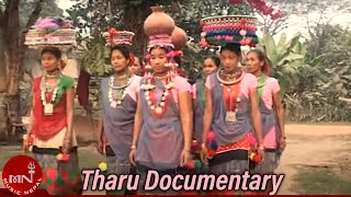 Tharu Film Documentary