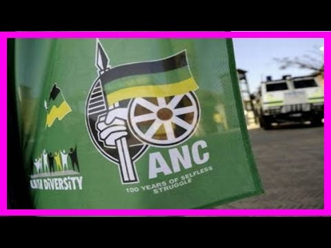 D-day for anc in kzn as judge set to rule in rebels case | Africa Latest News