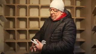 Ch. Lassotta - gołębie lini 808 Karola Paszka - prezentuje C. Jagielski - 03.01.2017r.