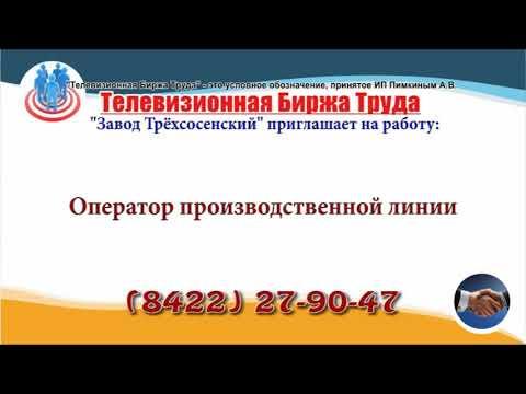 28 03 19 РАБОТА В УЛЬЯНОВСКЕ Телевизионная Биржа Труда 3