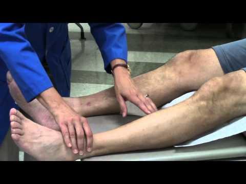 Peripheral vascular system assessment