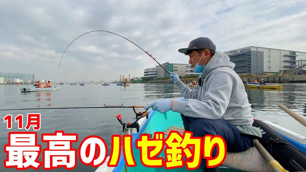 【11月ハゼ釣り】今、立派なハゼが軽く100匹釣れちゃう場所がコチラ