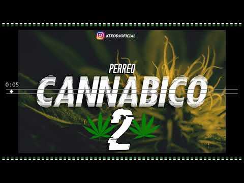 Perreo Cannabico 2 - Keko DJ ft BRUNO CABRERA DJ & DJ RODRI