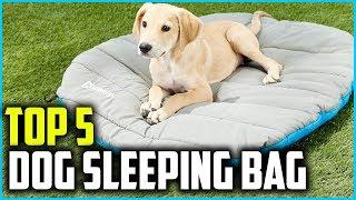 Best Dog Sleeping Bag